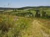 Wiesenpfad - Sicht auf Grönebach