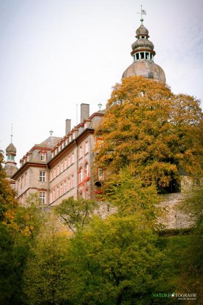 herbst-im-park-36