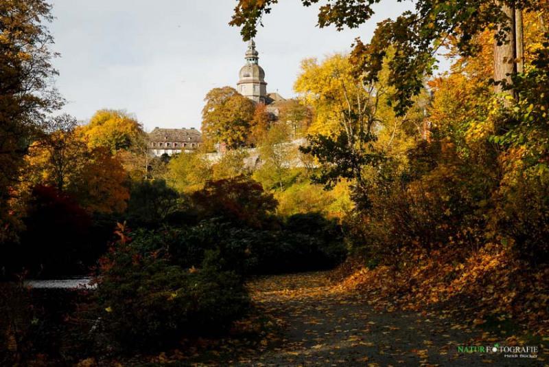 herbst-im-park-50