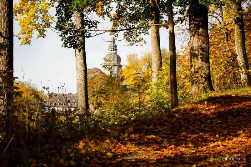 herbst-im-park-52