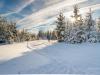 Girkhausen_Steinert_Winter-006