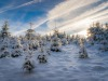 Girkhausen_Steinert_Winter-013