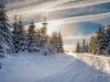 Girkhausen_Steinert_Winter-016