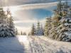Girkhausen_Steinert_Winter-017