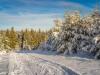 Girkhausen_Steinert_Winter-018