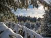Girkhausen_Steinert_Winter-020