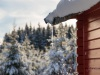Girkhausen_Steinert_Winter-023