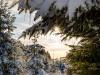 Girkhausen_Steinert_Winter-028