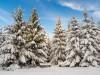 Girkhausen_Steinert_Winter-031