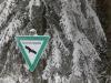 Girkhausen_Steinert_Winter-035