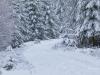 Girkhausen_Steinert_Winter-051