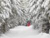 Girkhausen_Steinert_Winter-058
