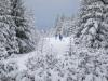 Girkhausen_Steinert_Winter-060
