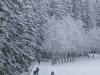 Girkhausen_Steinert_Winter-069