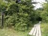 Rothaarsteig & Waldskulpturenweg