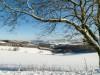Winter-im-Schmallenberger-Sauerland-016