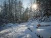 Winter-im-Schmallenberger-Sauerland-019