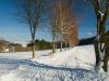 Winter-im-Schmallenberger-Sauerland-024