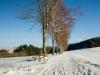 Winter-im-Schmallenberger-Sauerland-025