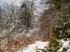 Winter-im-Schmallenberger-Sauerland-027