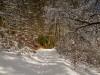 Winter-im-Schmallenberger-Sauerland-028