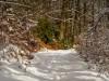 Winter-im-Schmallenberger-Sauerland-029