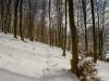 Winter-im-Schmallenberger-Sauerland-030