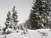 Winter-im-Schmallenberger-Sauerland-038