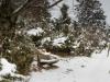 Winter-im-Schmallenberger-Sauerland-041