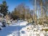 Winter-im-Schmallenberger-Sauerland-042