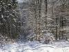 Winter-im-Schmallenberger-Sauerland-047