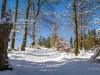 Winter-im-Schmallenberger-Sauerland-049
