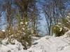 Winter-im-Schmallenberger-Sauerland-052