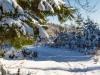 Winter-im-Schmallenberger-Sauerland-055