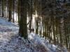 Winter-im-Schmallenberger-Sauerland-067