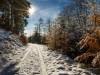 Winter-im-Schmallenberger-Sauerland-081