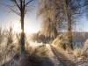 Winter-im-Schmallenberger-Sauerland-083