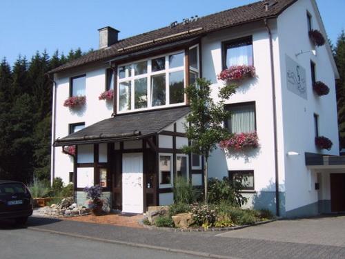 Landhaus Wittgenstein