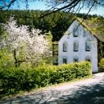 Haus Hainbach im Frühjahr
