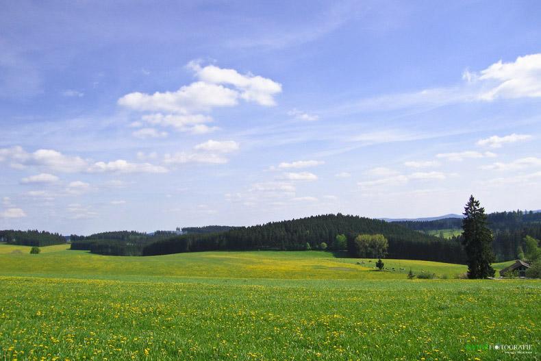 Wittgensteiner Schweiz