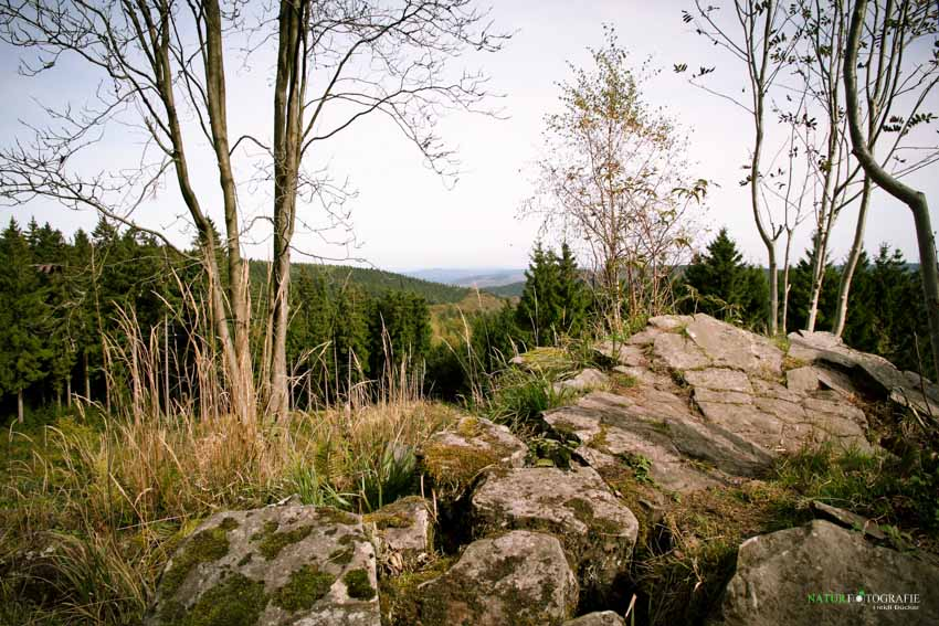 Aussicht von den Trödelsteinen